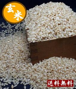 令和元年産岡山県産岡山玄米 20キロ