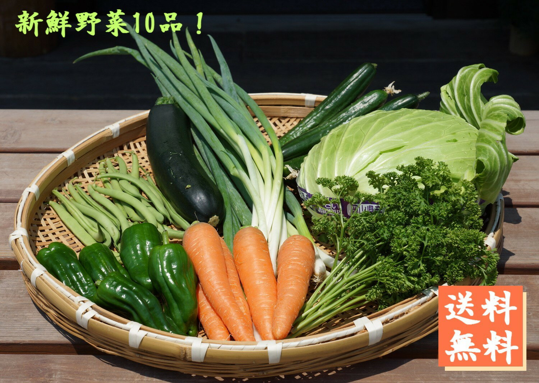 【野菜セット】まやかみ農園 おまかせ野菜詰め合せM 10品