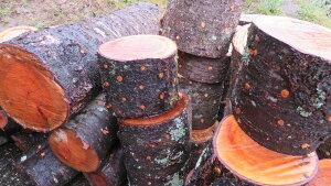 完熟あるだけ(お試し)自家製なめこ栽培セット 短木2本セット