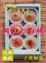 【予約販売】岡山白桃1.5kg箱詰 ご進物用 5個〜6個【ご進物・贈答用・お中元フルーツ】