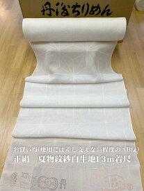 使用には差し支えないお得なAB格 シルク100% 丹後ちりめん白生地 着尺反物 13m巻き 1尺2分 39cm幅 身長165cmまで 夏物 紋紗織り 格子柄 希少品 色無地きもの向き 草木染 手芸 マスク向き 日本製