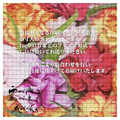 オリジナルでシルクスカーフの製作をいたします。デジタルデザインをCDで送付してください。90cm×90cmなどご希望サイズのシルクスカーフに仕上げるデジタル染色サービスです