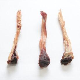 【送料無料)ペット用 鹿アキレス 30g 最高級品質 ドッグフード ペットフード 繊細な九州鹿 安心 健康 おやつ 健康 無添加 天然 国産 ジビエ 低脂肪 高タンパク ヘルシー