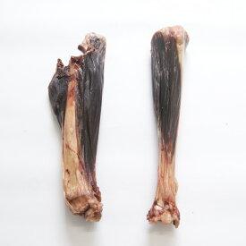 【送料無料】ペット犬用_鹿スネ(ボーン) 大サイズ_2本(写真左)高級品質 ドッグフード ペットフード 繊細な九州鹿 安心 健康 おやつ ドッグフード 無添加 天然 国産 ジビエ 低脂肪 高タンパク ヘルシー