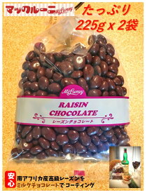 レーズンチョコ たっぷり225g x 2袋【3980円以上 送料無料 】