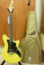 【在庫あり・即納!】●Ibanez エレキギターROADCORE RC1720S/TYF(GIG BAG、工具付)【KK9N0D18P】