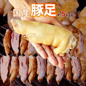 国産 豚足 とんそく てびち テビチ チョッパル トン足 トンソク 半割り カット 済み 2/1 豚足スライス 業務用 生 冷凍 約5kg 10〜15本前後 焼足毛処理済 送料無料 わんはぎ 韓国 チョッパル 猪脚