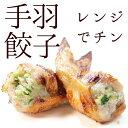 レンジでチンですぐに食べれる! 揚げずに美味しい 焼き手羽先餃子 5本 手羽餃子 冷凍