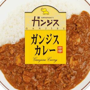 レトルトカレー 送料無料 お試し 宮崎のカレー専門店「味のガンジス」のガンジスカレー 200g カレーライス 食品 レトルト食品のため常温保存も可能 珍味のお試しに簡易包装 訳あり(わけあ