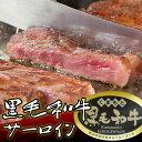 [ 送料無料 ] 黒毛和牛 サーロイン (230g×2枚)【黒毛和牛 贈り物/プレゼント/父の日/母の日 牛肉 サーロイン ステーキ】