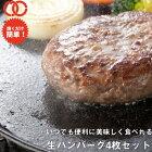牛豚合挽き焼くだけ簡単ハンバーグパテ(125g×4枚)1枚あたり166円