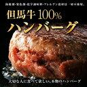 【自家製】【但馬牛】但馬牛100%ハンバーグ 5個 950g【国産牛肉 和牛 a5ランク 黒毛和牛 松阪牛 ギフト 神戸牛 近江…