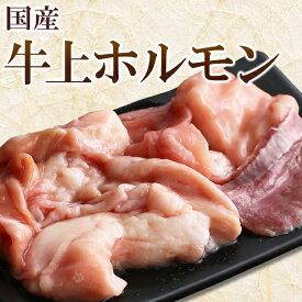 国産 牛 上ホルモン 200g (小腸 ギアラ ハツ のミックス) ホルモン 焼き肉 焼肉 バーベキュー BBQ もつ鍋 モツ鍋