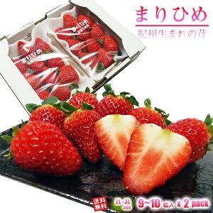 いちご まりひめ 和歌山オリジナル品種 2L〜3Lサイズ 約300g(約9〜10粒) x 2パック 送料無料 TVでも紹介された幻のイチゴ 秀品 イチゴ 苺 ご家庭・ご贈答用