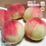 和歌山県産ご家庭用桃約2kg8〜12玉入り訳ありももモモ白鳳嶺鳳白桃