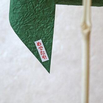 風車グリーン×縞染グリーン
