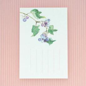 季節のはがき[秋]野葡萄