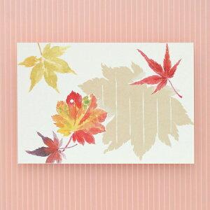 季節の絵はがき[秋]紅葉狩