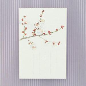 季節の絵はがき[冬]白梅