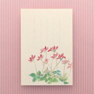 季節の絵はがき[春]三角草(みすみそう)
