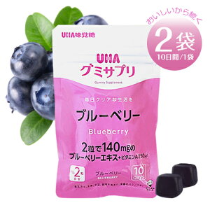 UHA味覚糖 UHAグミサプリ ブルーベリー 【2袋】 ポイント消化 送料無料 バラ売り お試し 個包装 健康 グミ サプリ
