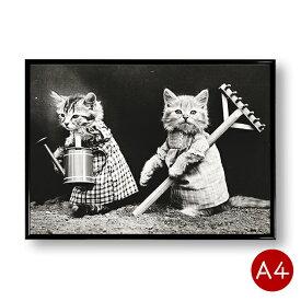 A4ポスター 猫のモノクロポスターNo.1 花壇 モノトーン インテリア 動物 写真 アートポスター 壁飾り ビンテージ ポイント消化 送料無料