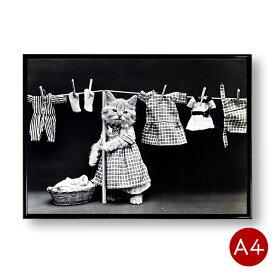 A4ポスター 猫のモノクロポスターNo.6 洗濯 モノトーン インテリア 動物 写真 アートポスター 壁飾り ビンテージ ポイント消化 送料無料