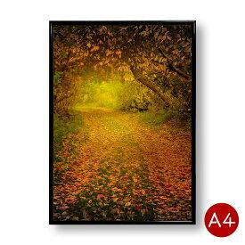 A4ポスター 秋の森林 No.2 インテリア 自然 景色 風景 写真 アートポスター 壁飾り ポイント消化 送料無料