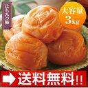 天日干南高梅 はちみつ梅(500g×6パック)【送料無料】