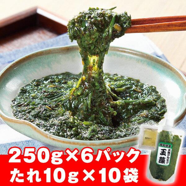 愛知県産!天然アカモクとろろ<6パック+タレ10袋セット>(250g×6パック:合計1.5kg+根昆布だし)