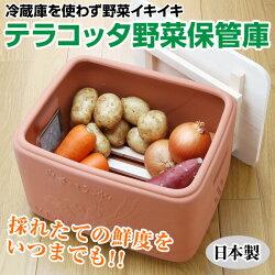 冷蔵庫を使わず野菜イキイキテラコッタ野菜保管庫