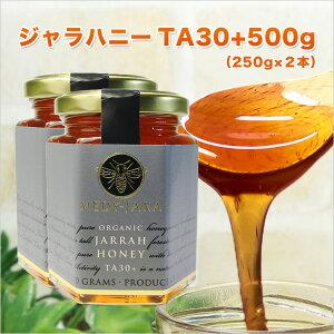 クーポンで最大30%OFF対象 ★ジャラハニー TA 30+(250g×2本セット)500g マヌカハニーと同様の効果を持つ世界最高級の健康活性力! オーストラリア・オーガニック認定 蜂蜜 ※分析証明書付 非加