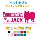 【横18cm】名入りドッグネーム長方形ステッカー【メール便 送料無料!】【犬種11種】カラー13色 車 犬 名前 ドックインカー 肉球 ゲージ…