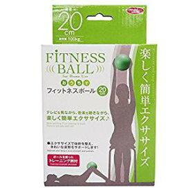 【ポイント5倍】体幹トレーニングにオススメ おうちでフィットネスボール 20cm