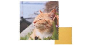 飛び猫 トビネコメガネフキ 3222-06 チャトラネコ 眼鏡拭き めがね拭き メガネ拭き おすすめ メガネクロス かわいい クリーニングクロス スマホ 液晶拭き プレゼント ギフト