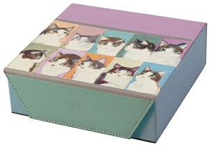 2本収納 複数 MAN コレクションケース -1 098410 マンハッタナーズ メガネケース 小物 おしゃれ かわいい 眼鏡ケース ネコ 猫 猫好き レディース メンズ 女性 男性 子供 プレゼント ギフト 贈物