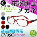 Cv05c_main01