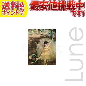 OPKT クリーニングクロス HI-LOOK 250-02 名画シリーズ「アラベスク」 トレシー愛用の方おすすめ