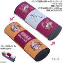 ディズニーキャラクターメガネケースWDE-2000TR カラー:C