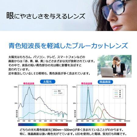 目の疲れを解消!【度なし・度付き対応PCグラス】レイバン5017&青色短波長カットメガネ