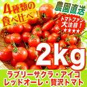 【冬の甘熟トマトの美味しさ】まるでフルーツ♪ レッドオーレ・贅沢トマト&夢トマト・アイコ・ラブリーサクラの食べ比べ詰め合わせ♪2kg ミニトマト【農家直送】