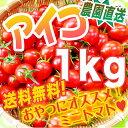 旬の食味・アイコ1キロ・美味しく栄養補給♪