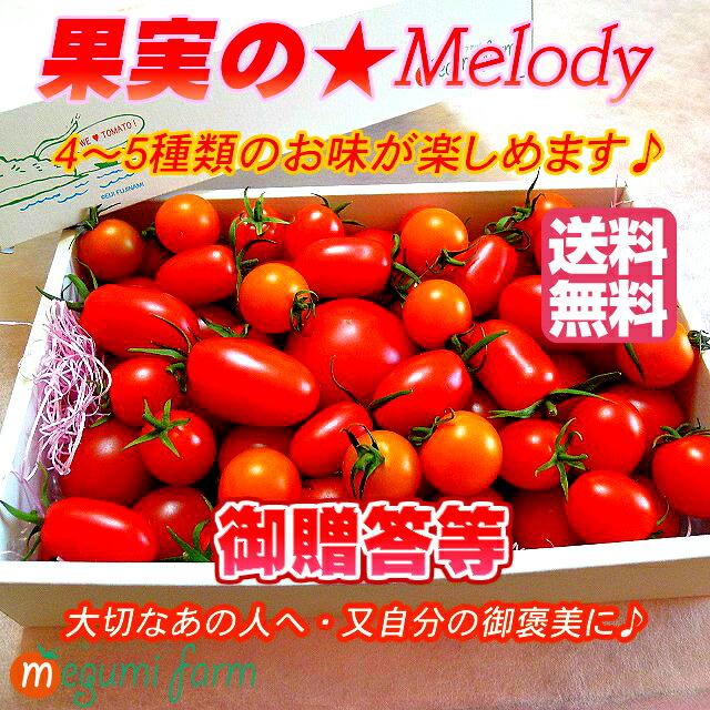 トマト・ご贈答等に!【美味しい甘熟トマト詰め合わせ】送料無料【トマトギフト】とまと・ミニトマト10〜19種類♪果実のメロディー・お祝い・ご贈答・お誕生日