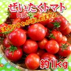 フルーツトマト★ぜいたくとまと★約1.2kg贅沢トマト