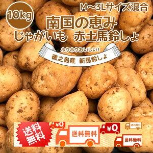 【予約2022年新じゃが】新じゃがいも 送料無料 10kg M~3Lサイズ混合 赤土 新じゃが 九州鹿児島徳之島産 にしゆたか 贈物 ギフト 長期保存 箱買い 南国野菜 産地直送 馬鈴薯 南国の恵み 新ばれい