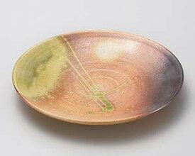 和食器 メ169-087 古信楽9.0丸皿