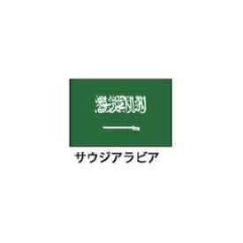 旗(世界の国旗) エクスラン国旗 サウジアラビア 取り寄せ商品