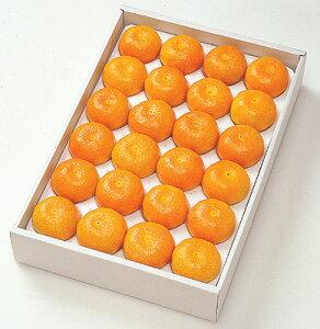 ハウスミカン 愛知県産(5kg) #100<送料込み・クール便>★ 7月3日ごろから発送 ★<二重包装不可>
