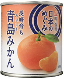 MY日本のめぐみ果実缶詰 長崎育ち 青島みかん 210g