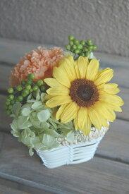 貴重で珍しいプリザーブドフラワーのひまわり 【Sunflower】 ギフト 誕生日 喜寿 結婚祝 入籍祝 花電報 プロポーズ 告白 お見舞い 開店祝 新築祝 出産祝 プレゼント お祝い 記念日 ヒマワリ インテリア おうち時間 自宅用 お供え ペット